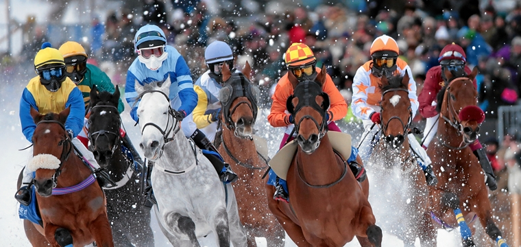 Pure excitement and adrenaline: be a VIP at the White Turf horse race